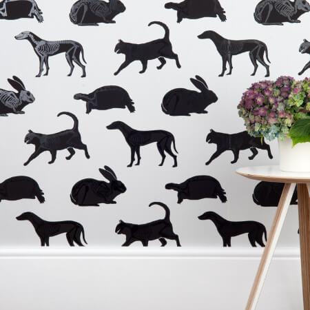 Animal Magic Wallpaper Collection