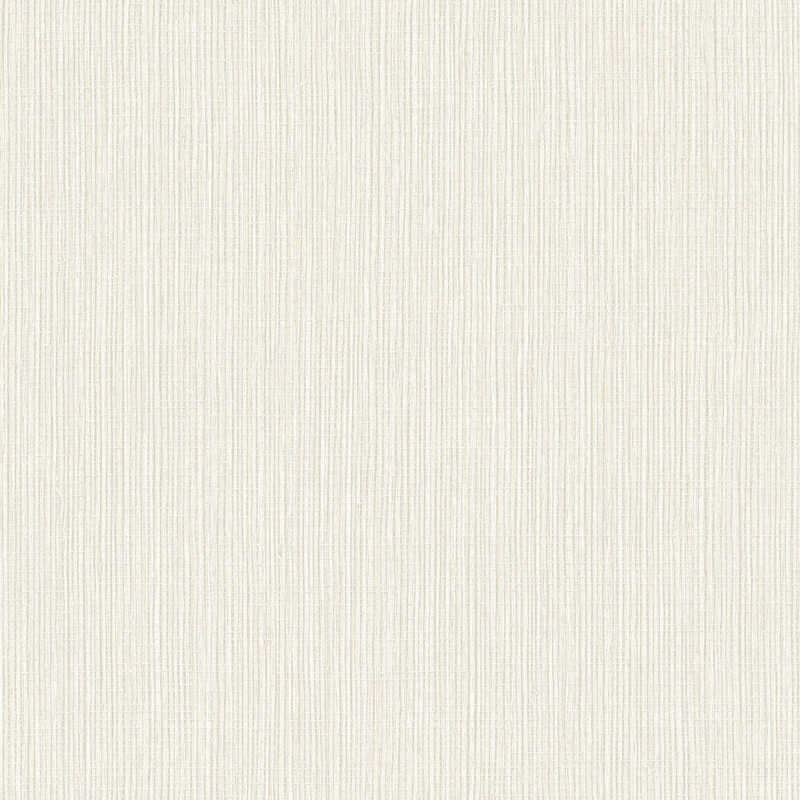 Arthouse Raffia Plain Wallpaper in Neutral - 670900