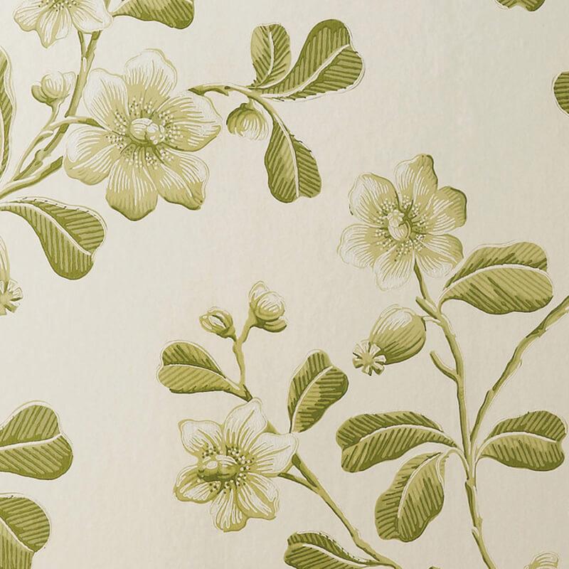 Little Greene Broadwick Street Wallpaper in Garden