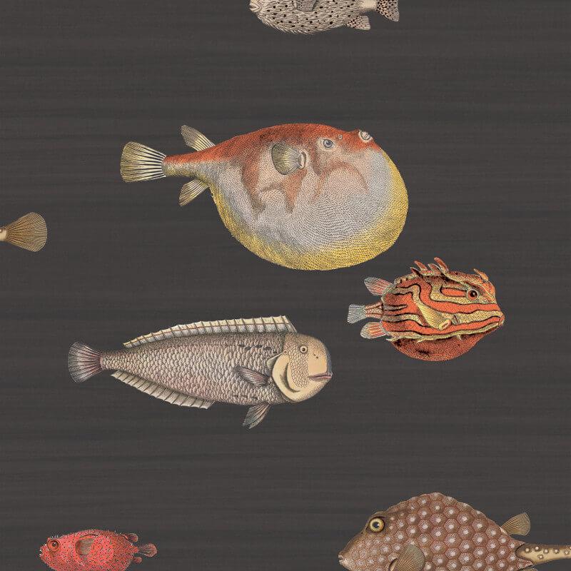 Cole & Son Acquario Black Multi Wallpaper - 97/10048