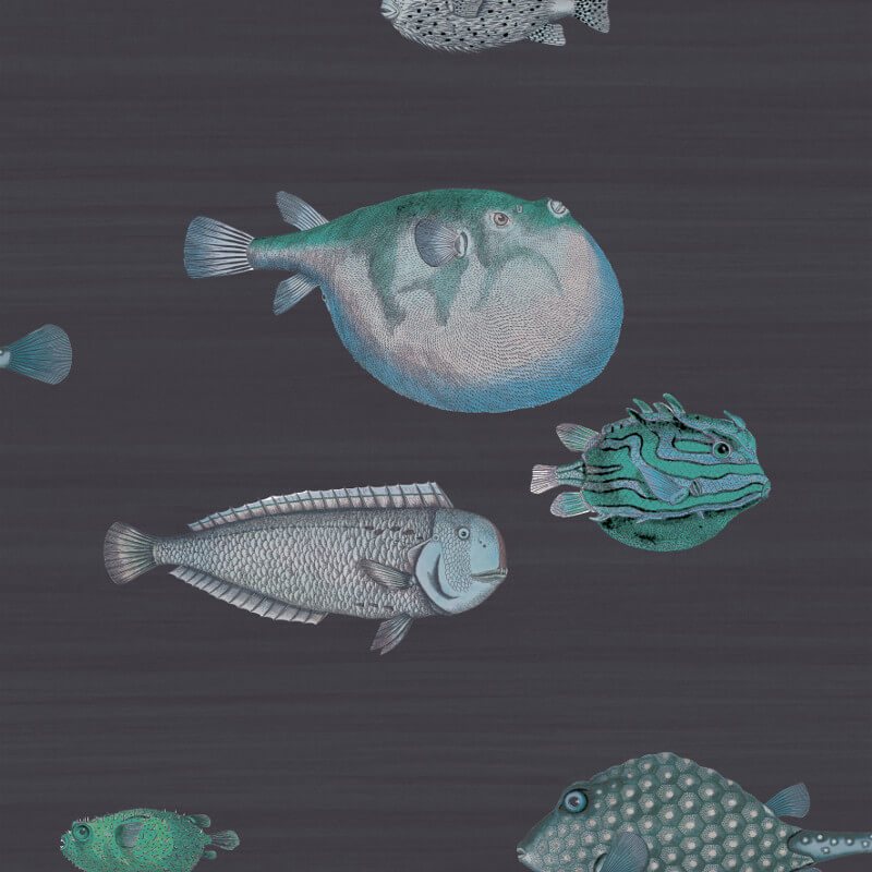 Cole & Son Acquario Deep Sea Blue Wallpaper - 97/10032