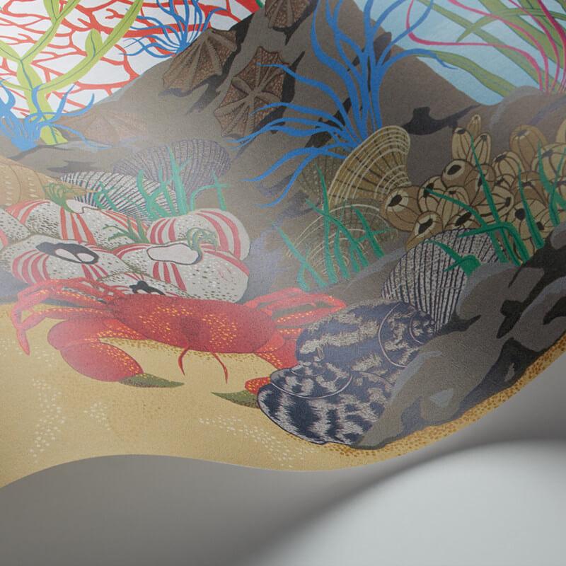 Cole & Son Archipelago Multi Wallpaper Border - 103/12054