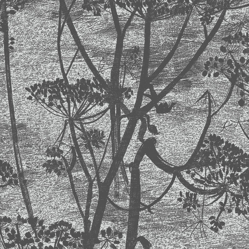 Cole & Son Cow Parsley Charcoal Wallpaper - 112/8026