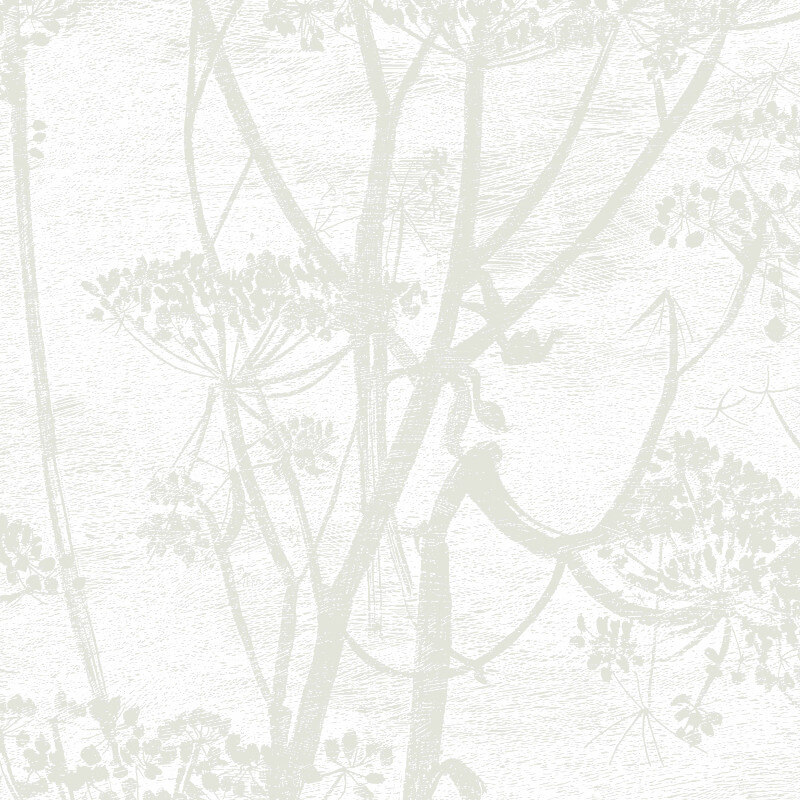 Cole & Son Cow Parsley Off White Wallpaper - 95/9052