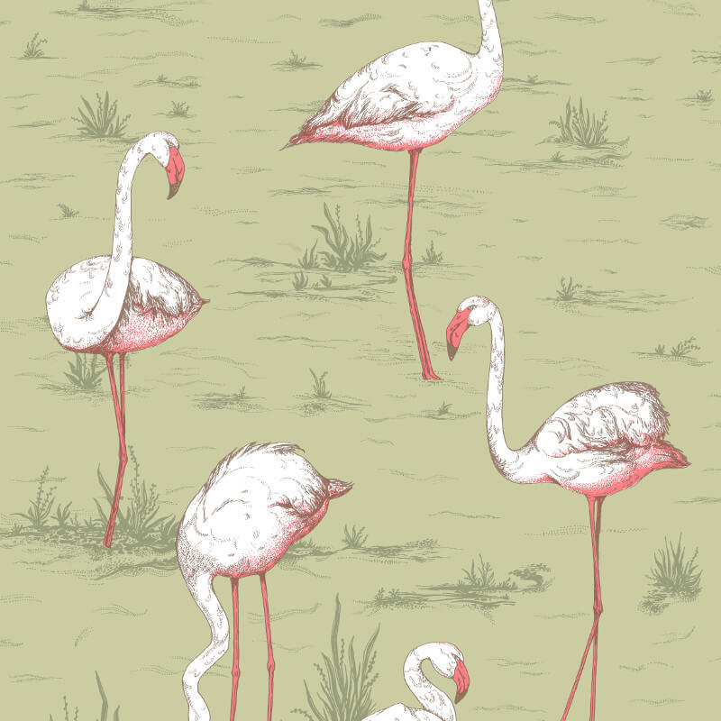 Cole & Son Flamingos Olive Wallpaper - 112/11038