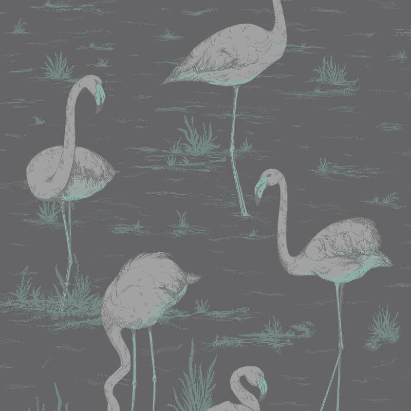 cole u0026 son flamingos wallpaper