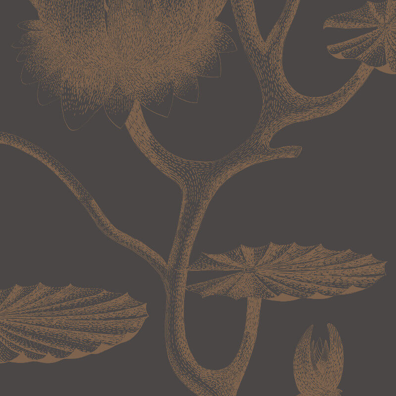 Cole & Son Lily Black/Bronze Wallpaper - 95/4021