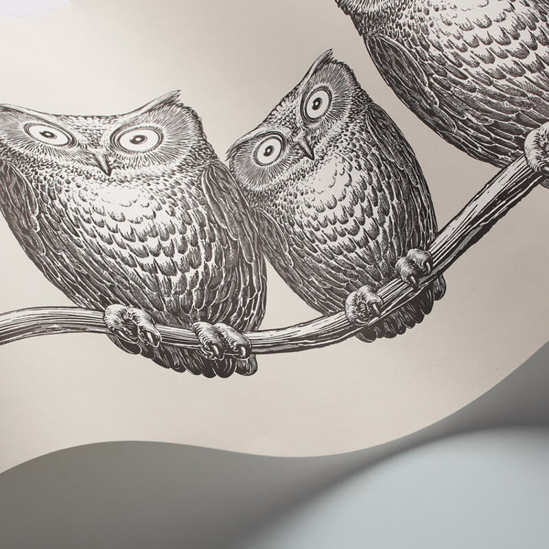 Cole & Son Nottambule Black/White Wallpaper Frieze - 97/5015