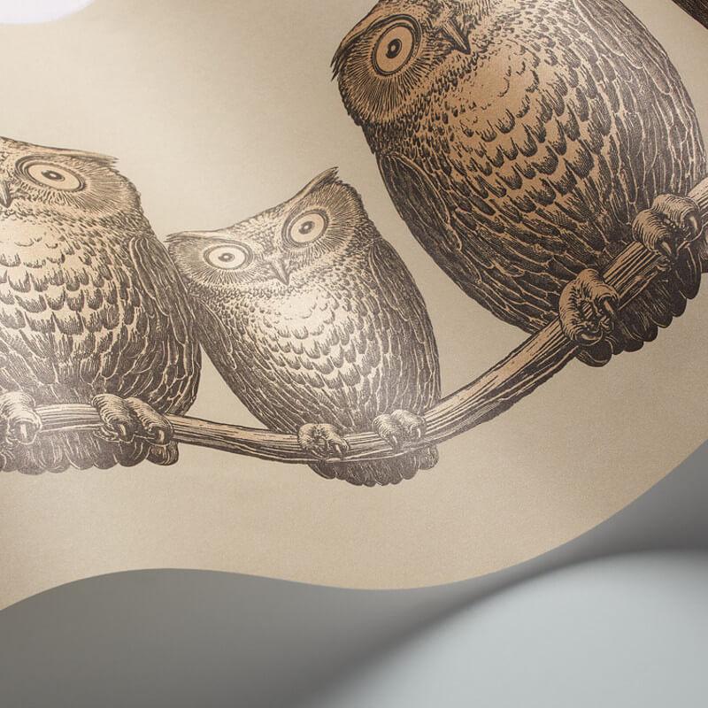 Cole & Son Nottambule Linen/Gold Wallpaper Frieze - 97/5016
