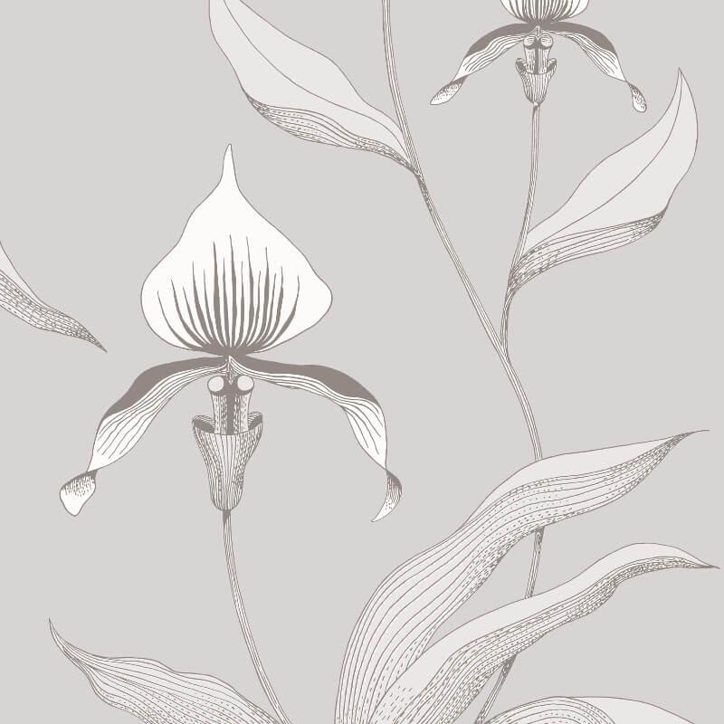 Cole & Son Orchid Grey/White Wallpaper - 95/10055