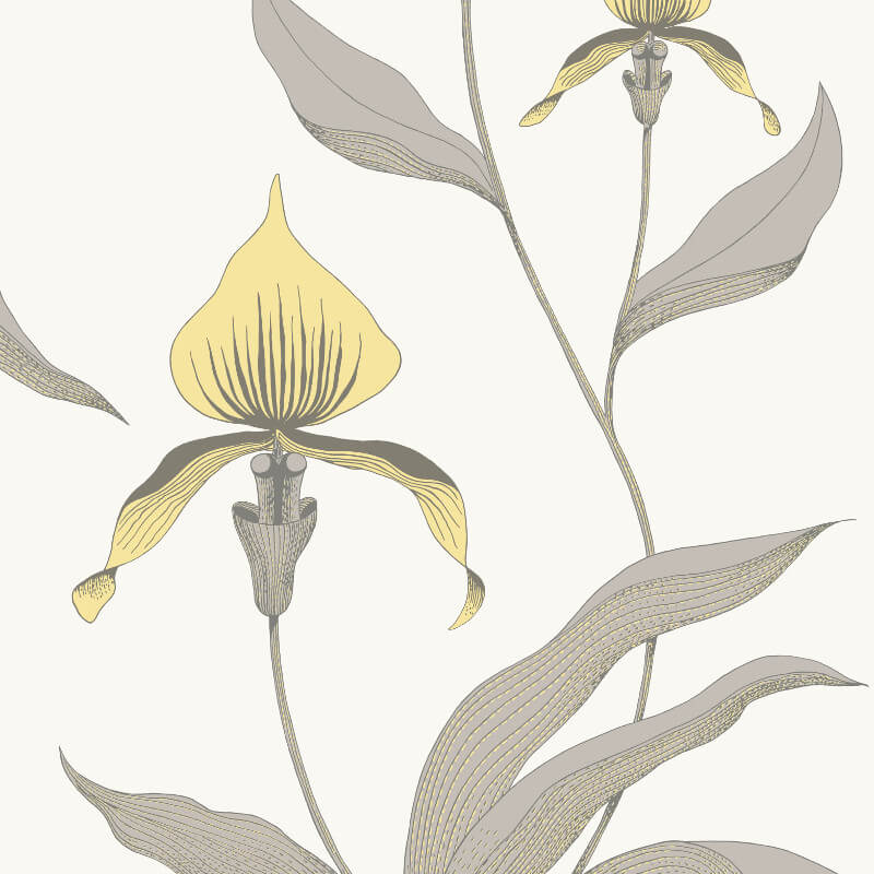 Cole & Son Orchid Yellow/Grey Wallpaper - 95/10057