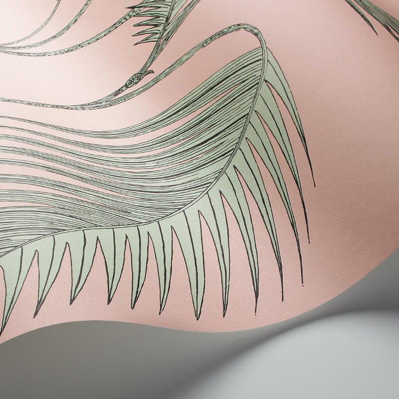 Cole Son Palm Leaves Alabaster Pink Mint Wallpaper