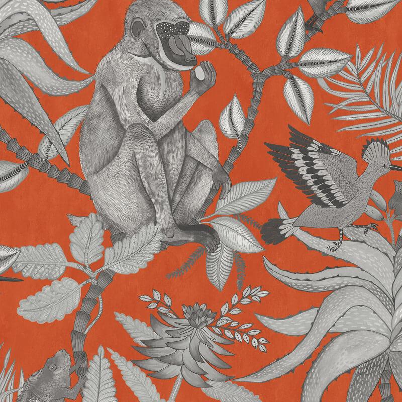 Cole & Son Savuti Orange Wallpaper - 109/1001