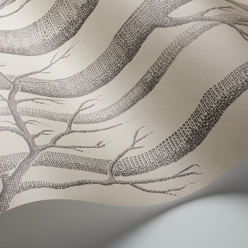 Cole & Son Woods Linen/Charcoal Wallpaper - 112/3009