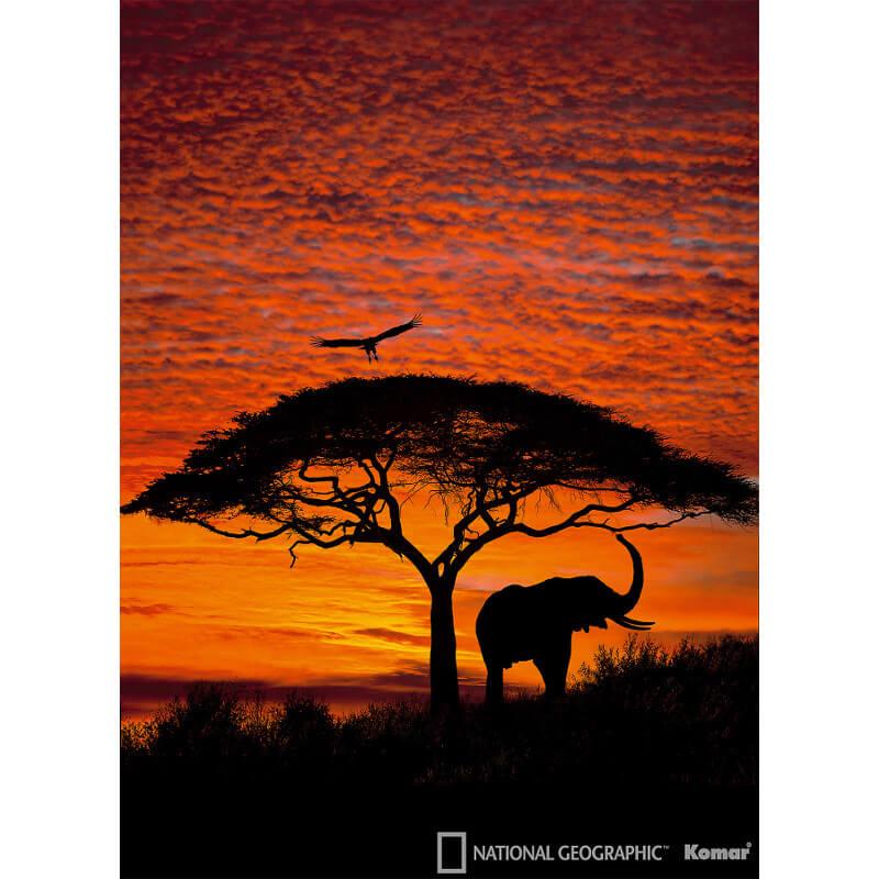 Komar African Sunset Scene Wall Mural - 4-501