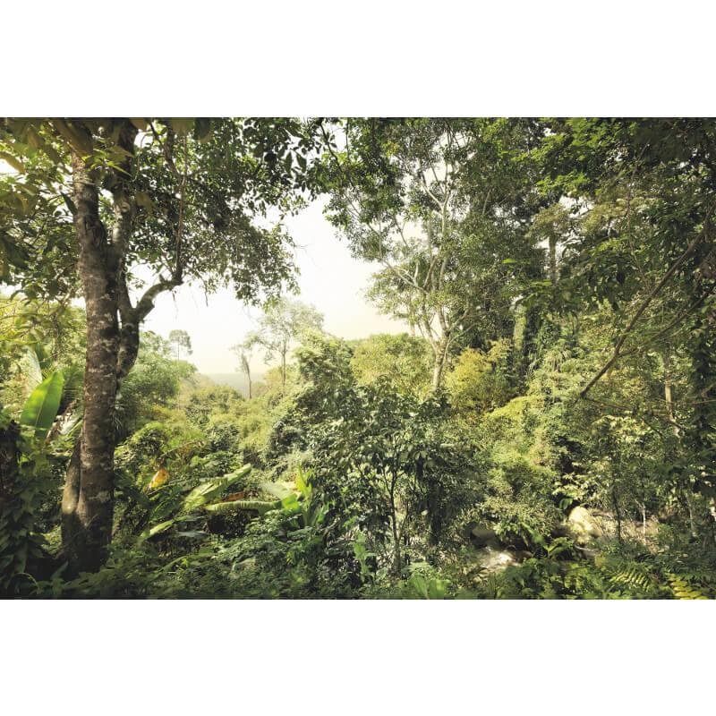 Komar Dschungel Scene Wall Mural - XXL4-024