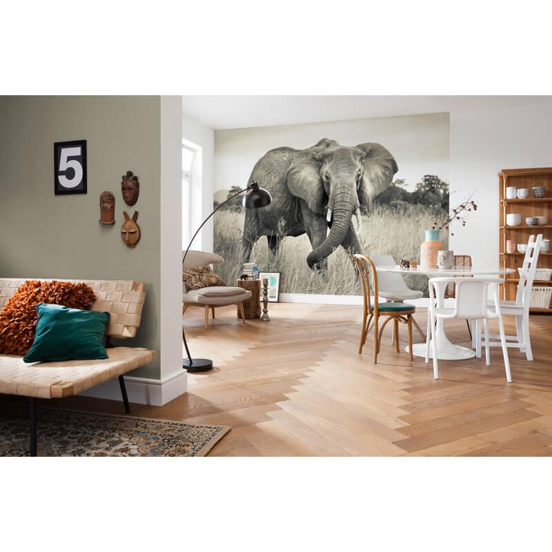 Komar elephant scene wall mural xxl4 529 for Elephant wall mural
