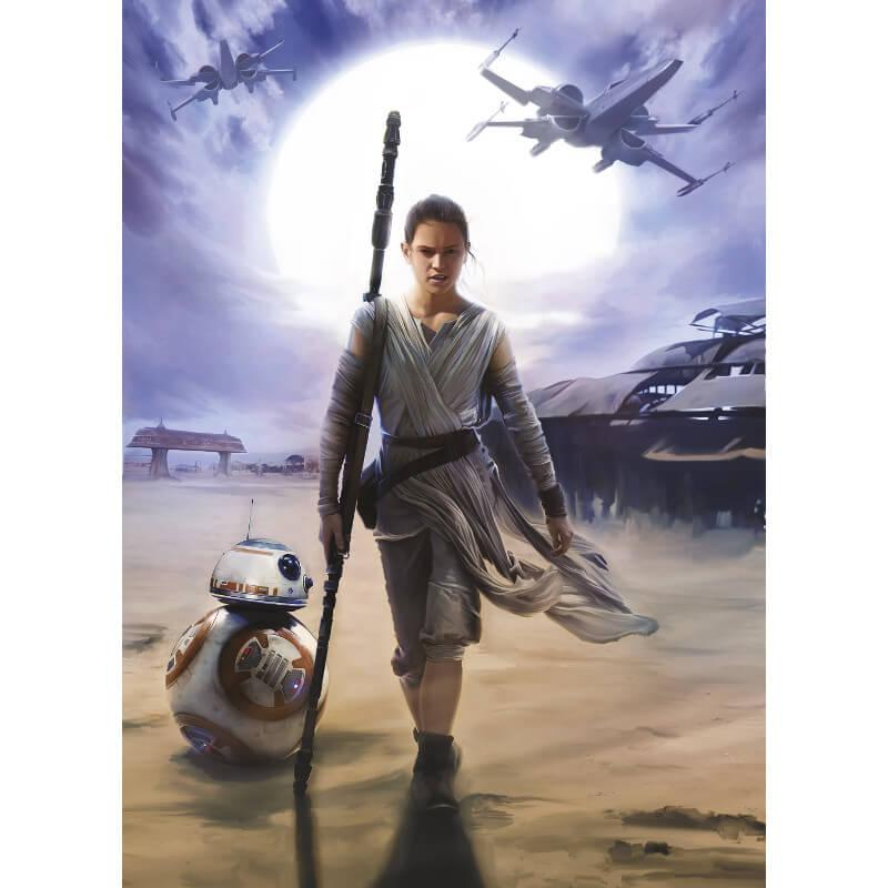 Komar Star Wars Rey Wall Mural - 4-448