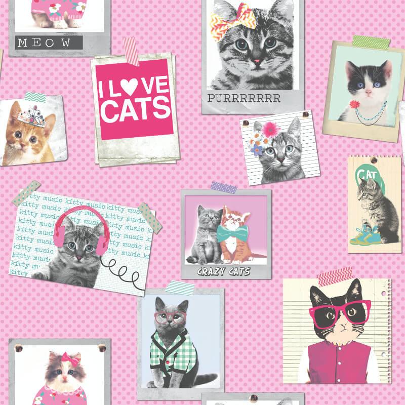 Rasch Crazy Cats Multi Wallpaper - 272802
