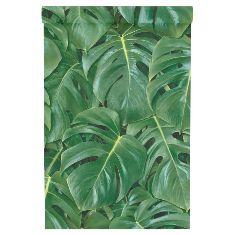 Freundin Tropical Palm Green Wallpaper - 441802